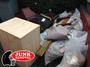 Junk Removal London