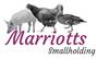 Marriotts Smallholding