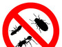 Pest Control Harlow