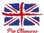 Pro Cleaners West Byfleet