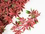 Artificial hedge mat, maple leaves mat