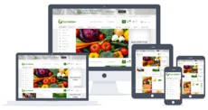 Make your site stand out from rest with custom website design