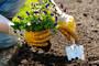 Gardeners Leytonstone