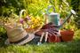 Gardeners Cricklewood