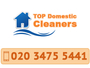 Top Domestic Cleaners London