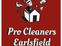 Pro Cleaners Earlsfield